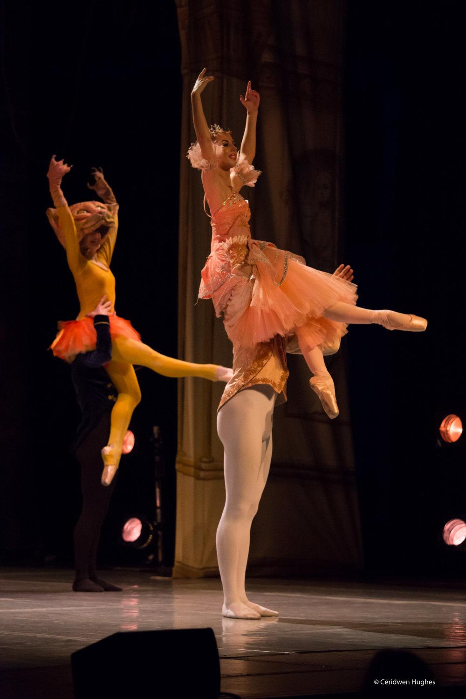 Ballet - cinderella sm-351.jpg