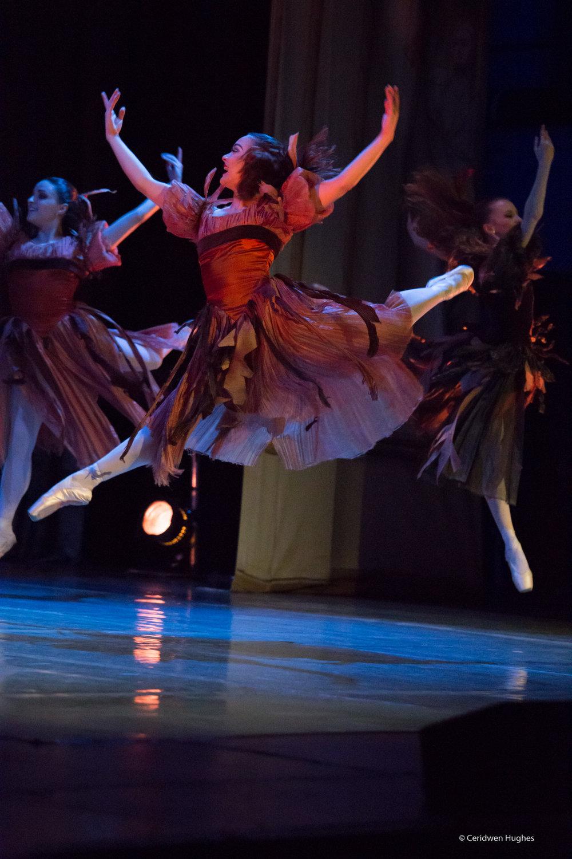Ballet - cinderella sm-306.jpg
