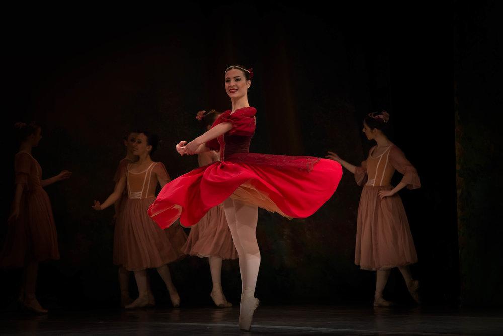 Vienna Festival Ballet--2.jpg