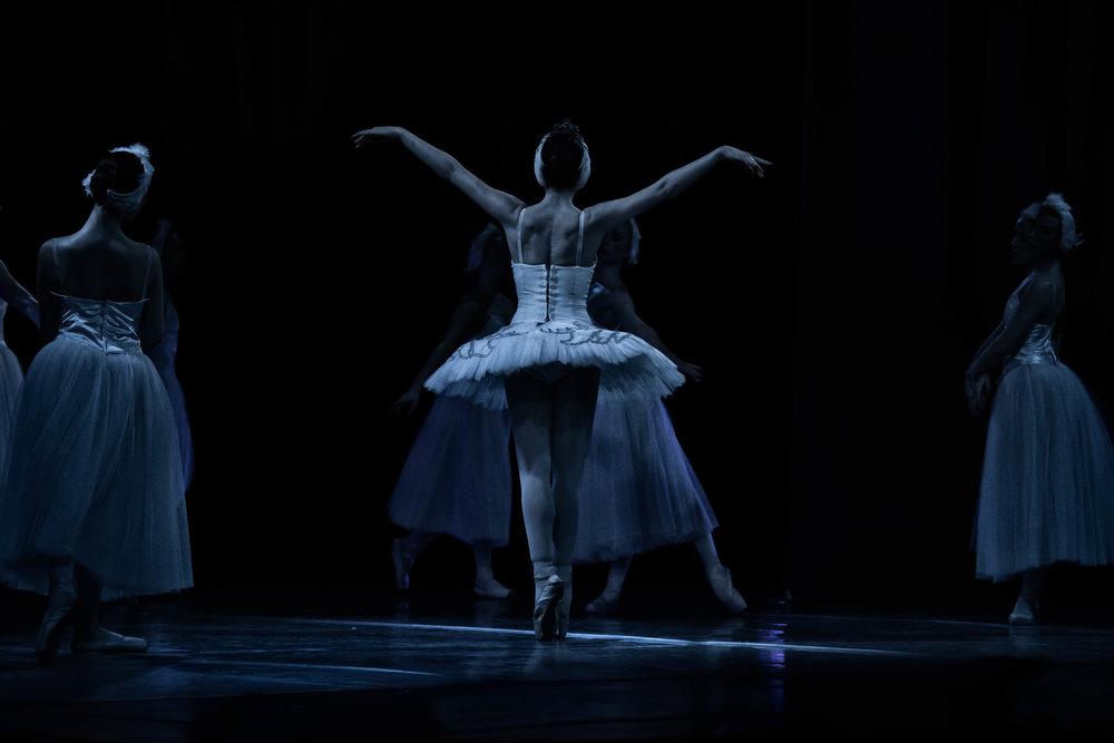 Vienna Festival Ballet--15.jpg
