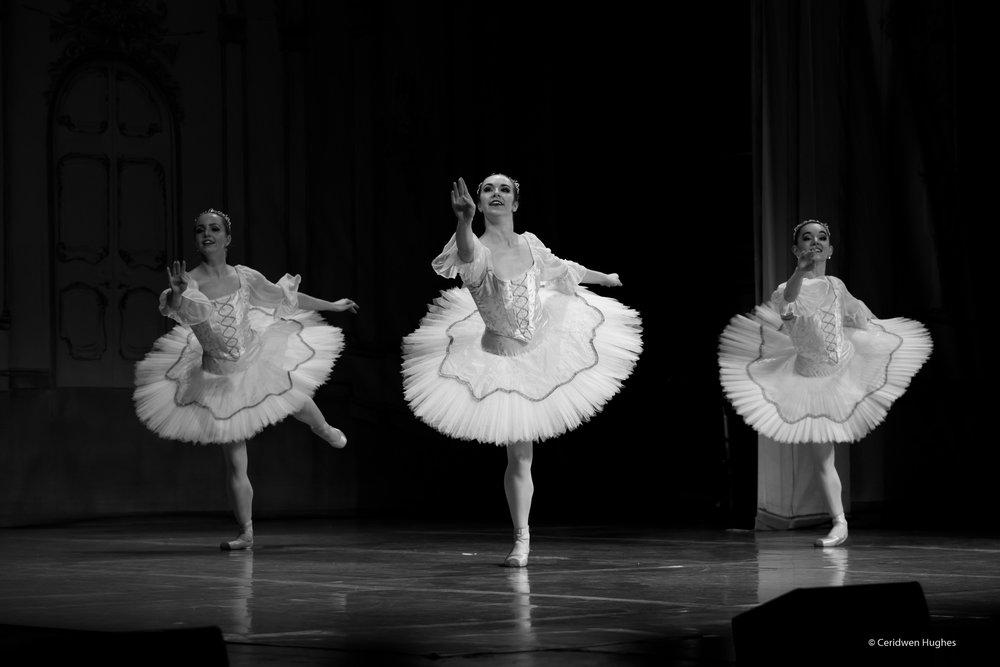 Ballet - cinderella sm--4.jpg