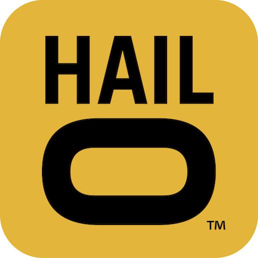 hailo-logo.jpg