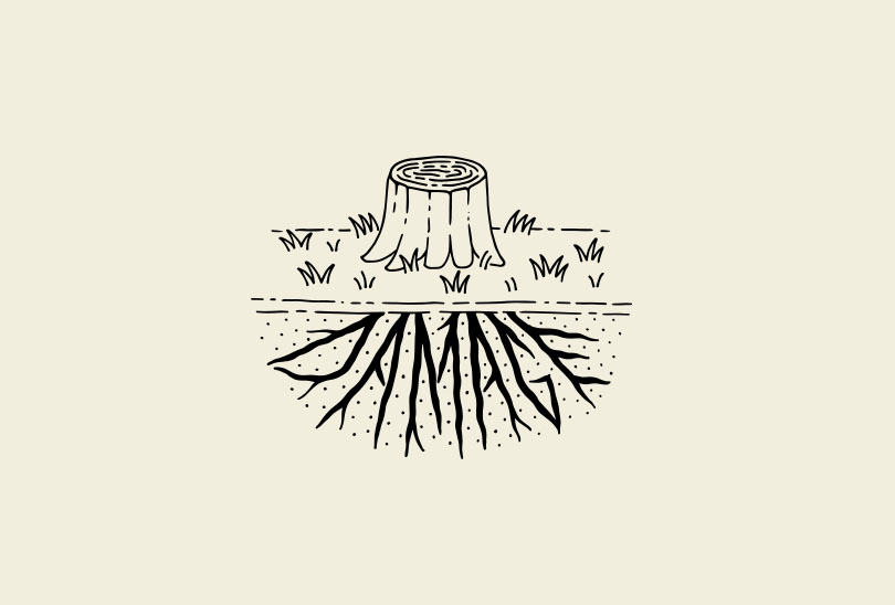 damage_roots.jpg