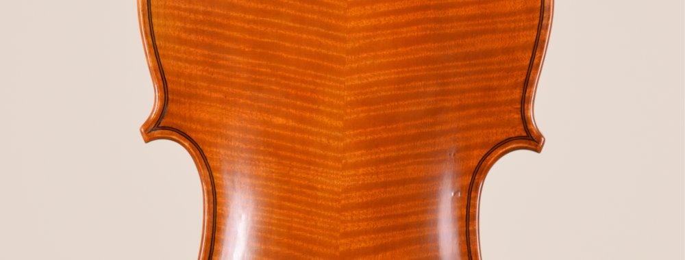 back edit of violin.jpg