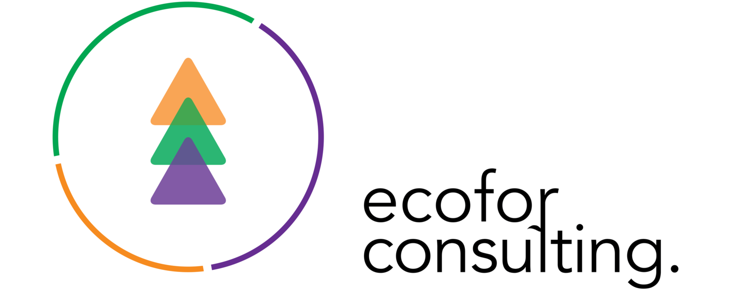 Ecofor consulting