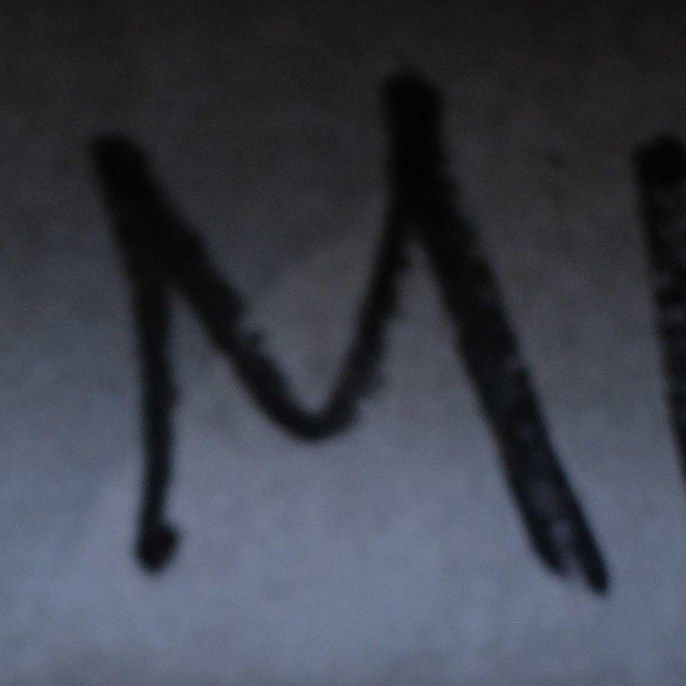 -M2-crop copy.jpg