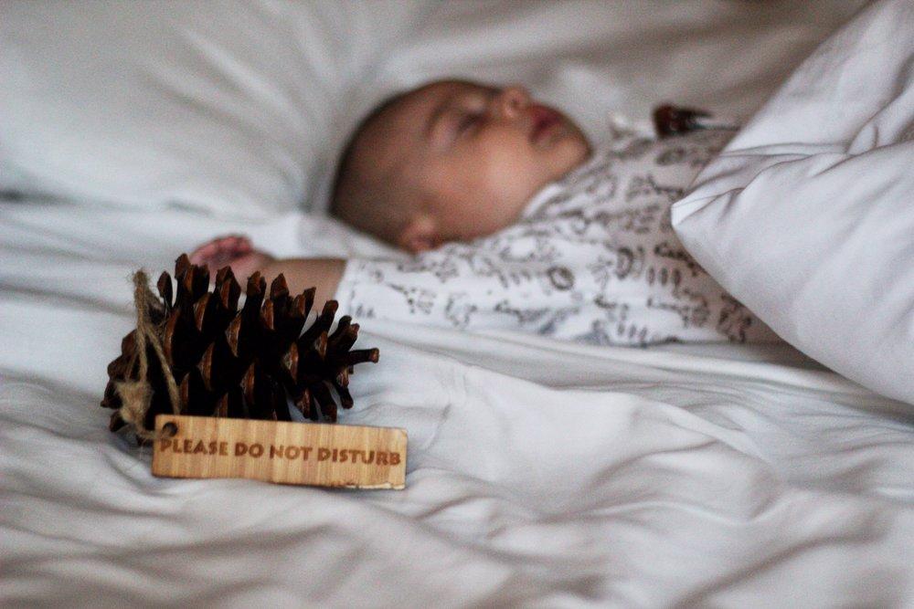Do Not Disturb Sign, Copyright Nicole Burron