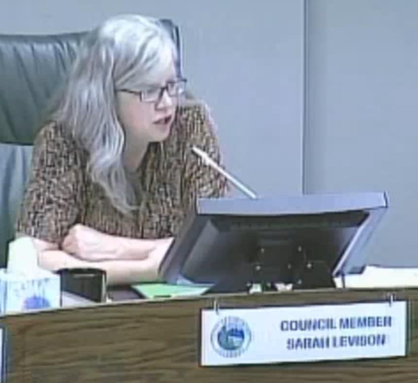 Sarah serving as City Council representative.