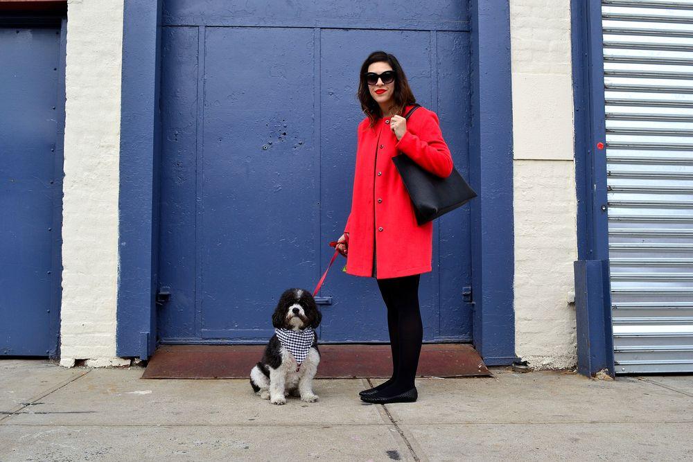 coat: BB Dakota, secondhand from Keiko Lynn's closet sale/dress: Kensie/ tights: H&M/ flats: Steve Madden/ tote bag: Brooklyn Industries/ sunglasses: Urban Outfitters