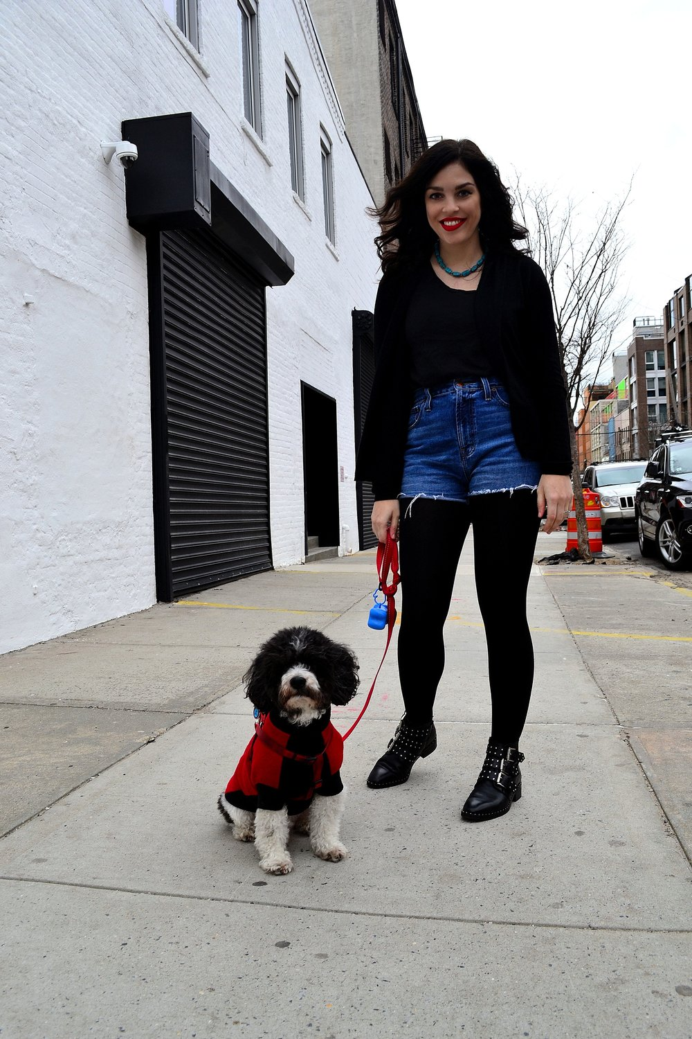 madewell tank shorts loft tights asos booties express sweater dog 4.JPG