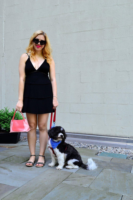 ASOS dress sunglasses sandals Furla bag with dog 1.JPG