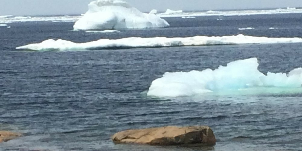 Icebergs in the Labrador Sea.jpeg