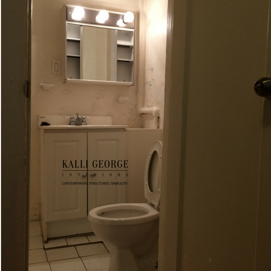 Toronto bathroom with toilet and vanity.jpg