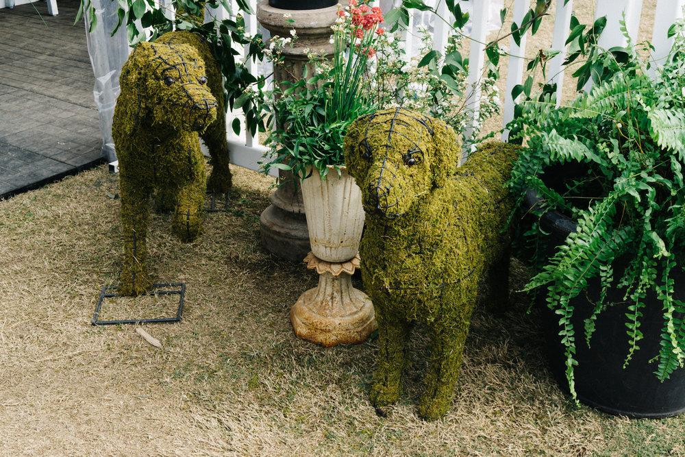 Garden and Gun dog topiary at SEWE 2017