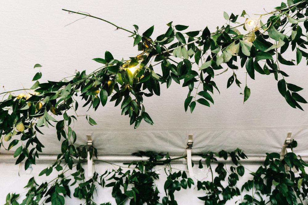 Garden and Gun tent foliage