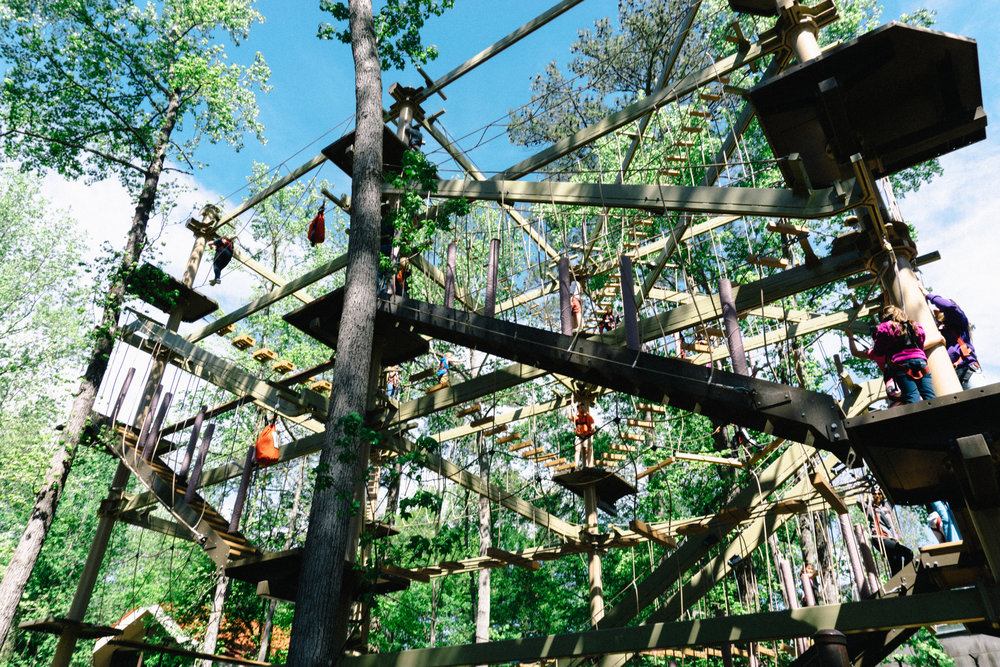 Ropes course inside the Riverbanks Zoo