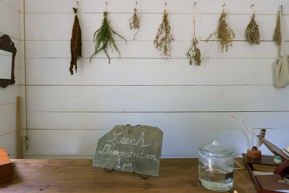 Apothecary herbs drying