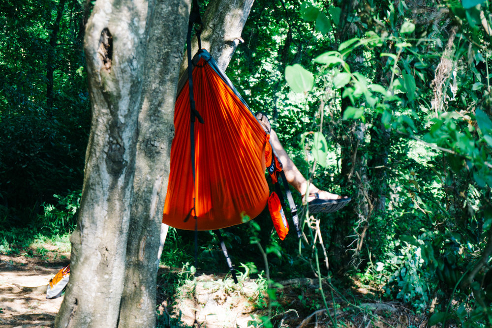 ENO hammock in the forest