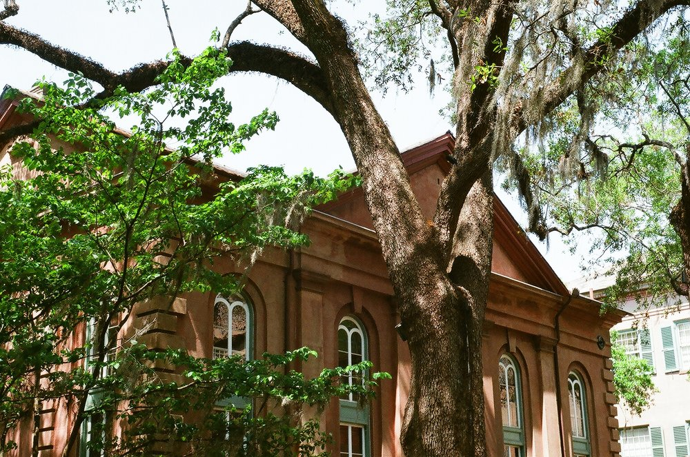 Towell Library in the College of Charleston Cistern