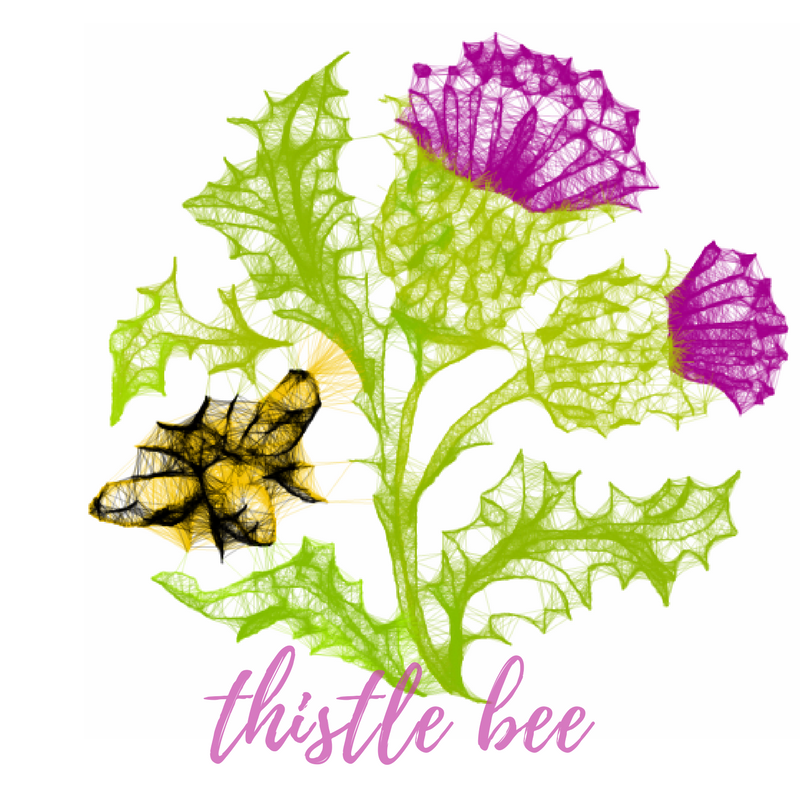 Thistle Bee - Travel & Lifestyle Blog