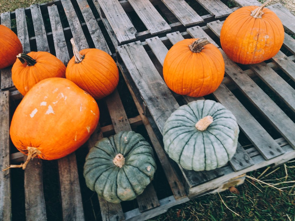 Pumpkins at St. Bartholomew's Episcopal Church in North Augusta