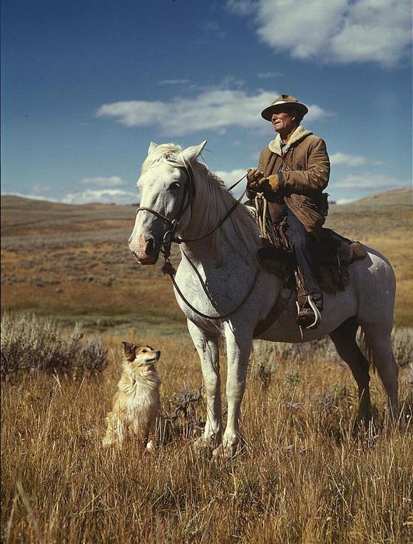 vintage shepherd.jpg