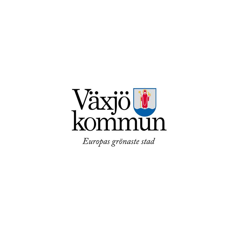 vaxjo.png