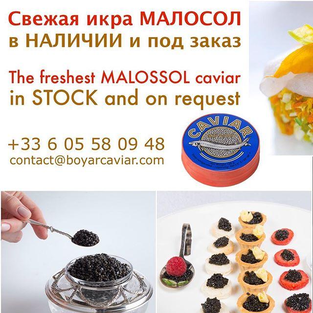 The best Easter long weekend appetizer!!! Порадуйте себя и своих близких свежайшим деликатесом в эти праздничные дни! WhatsApp us! • • • • • • • #caviar #boyar #boyarcaviar #gourmet #gastronomy #luxury #delicious #delicacy #unique #pleasure #michelin #monaco #монако #ницца #мишлен #икра #чернаяикра #sturgeon #осетр #осетргорячегокопчения #осетрина #белуга #beluga #easter