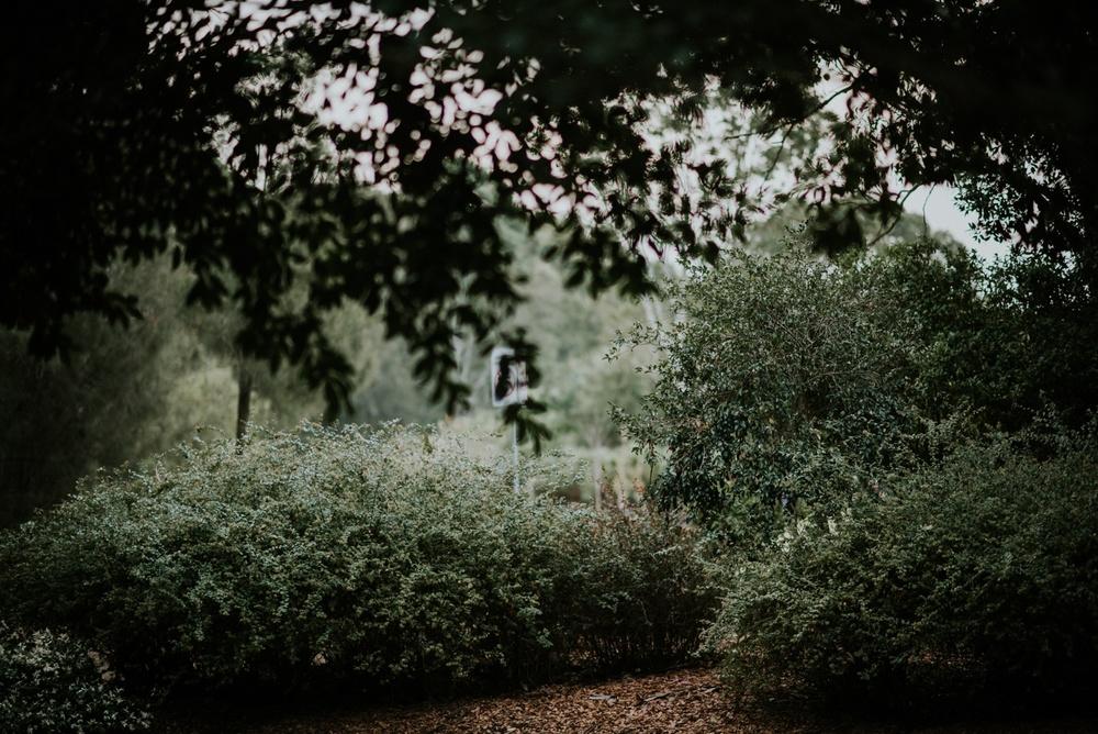 Nurragingy-Reserve-Portraits-9666_WEB.jpg