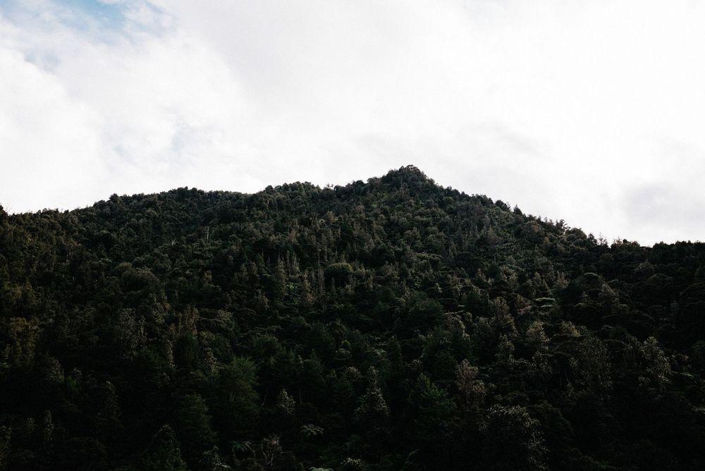 New Zealand Trip-12-web.jpg