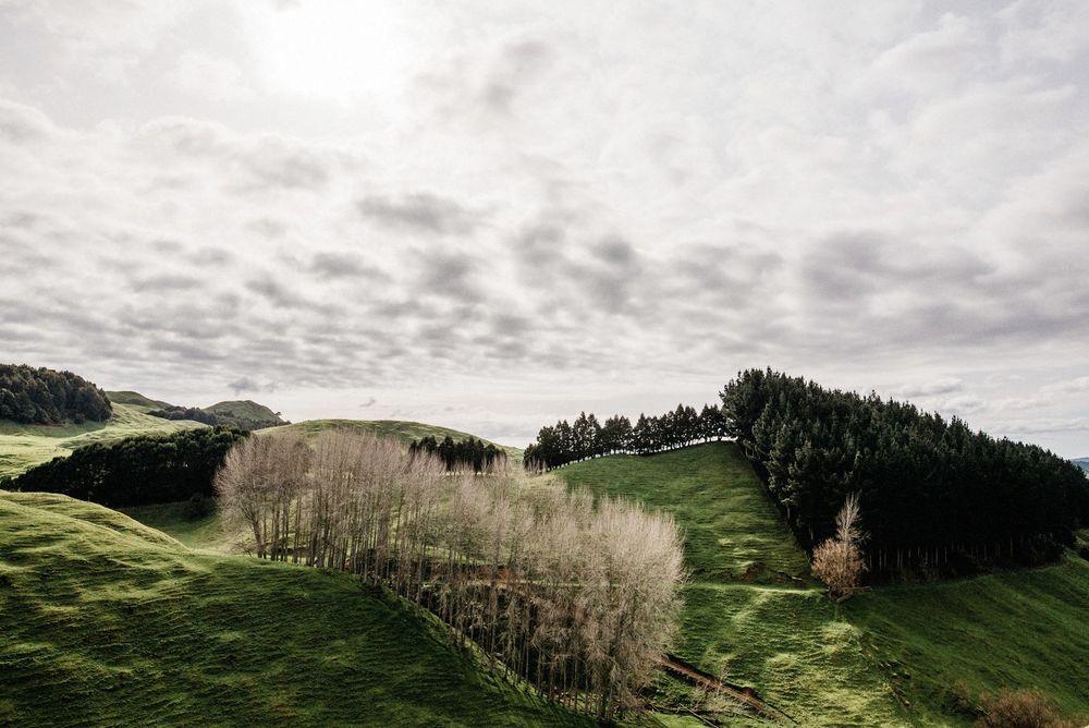 New Zealand Trip-103-web.jpg