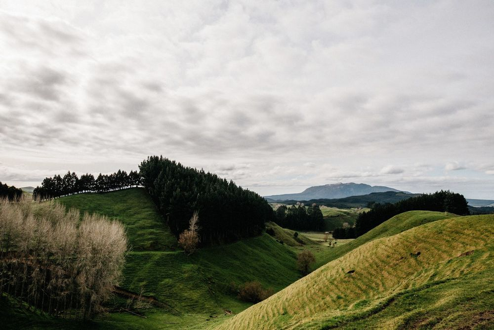 New Zealand Trip-104-web.jpg