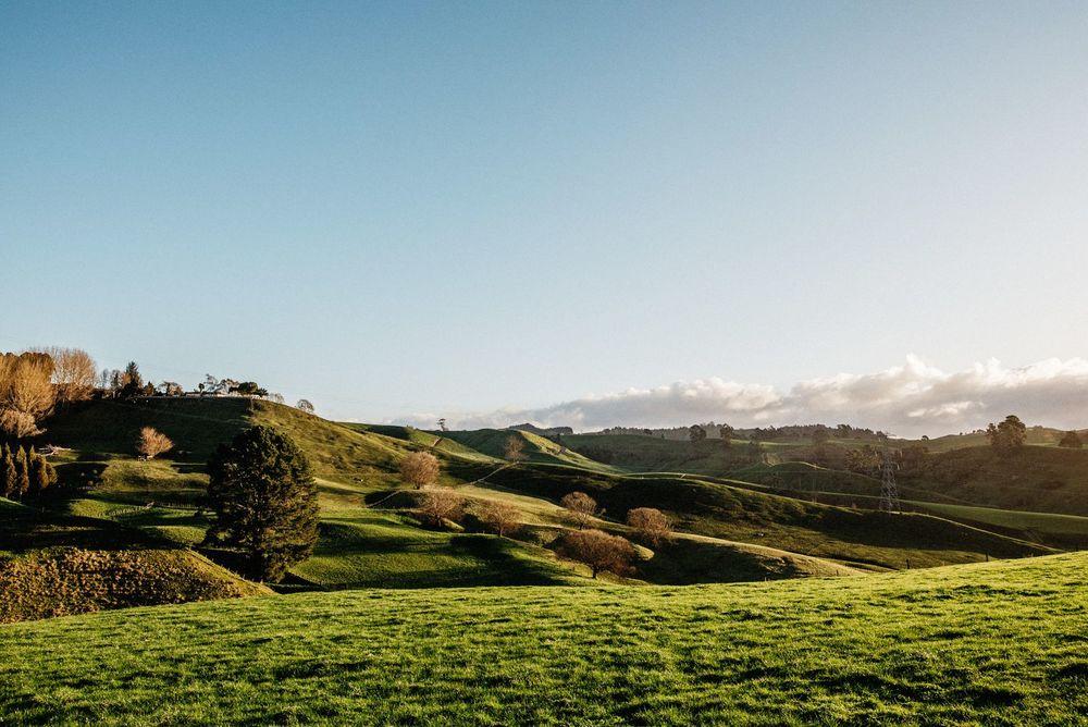 New Zealand Trip-128-web.jpg