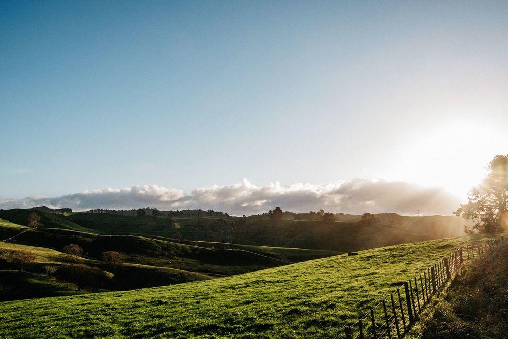 New Zealand Trip-129-web.jpg