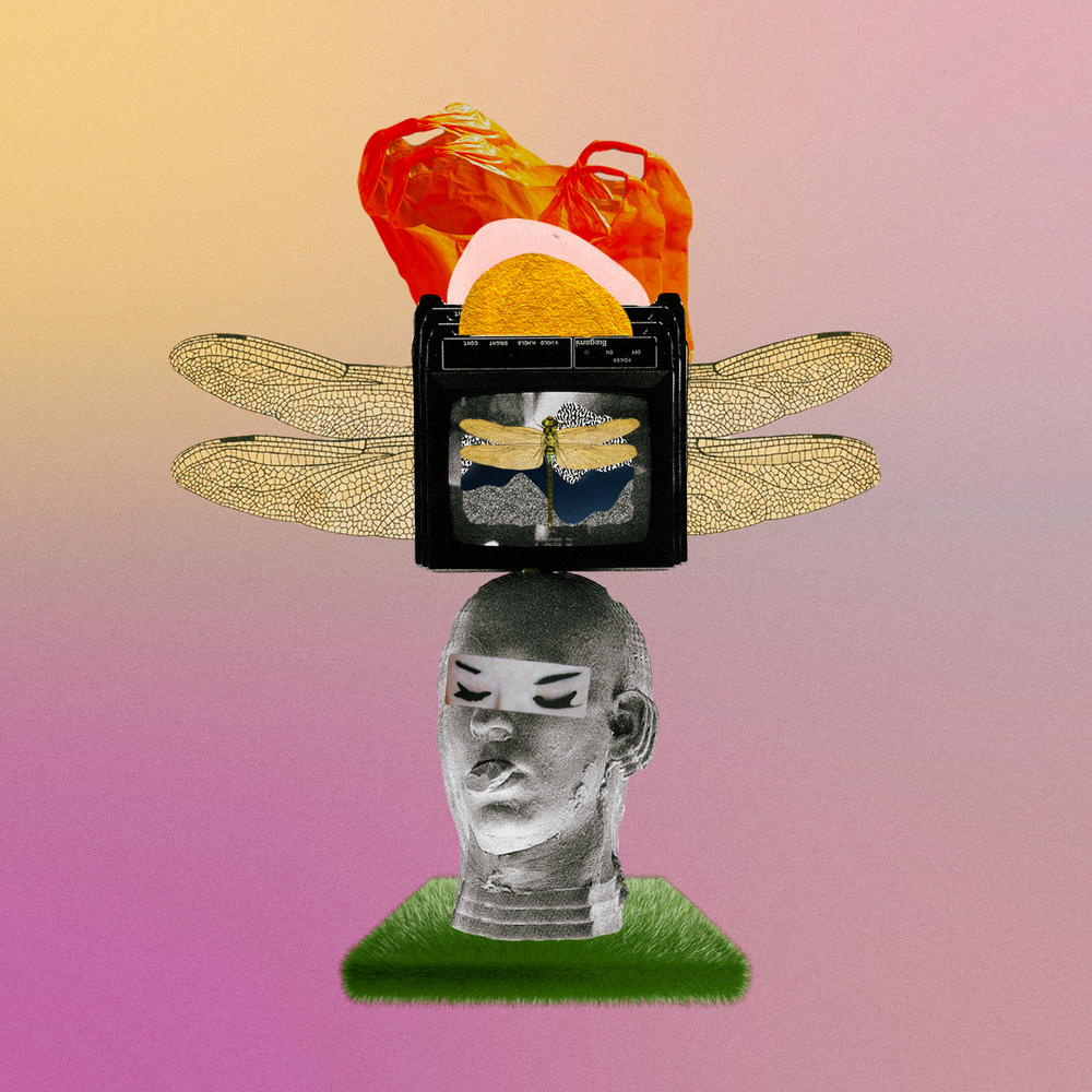 Media Mad [collage, 2016]