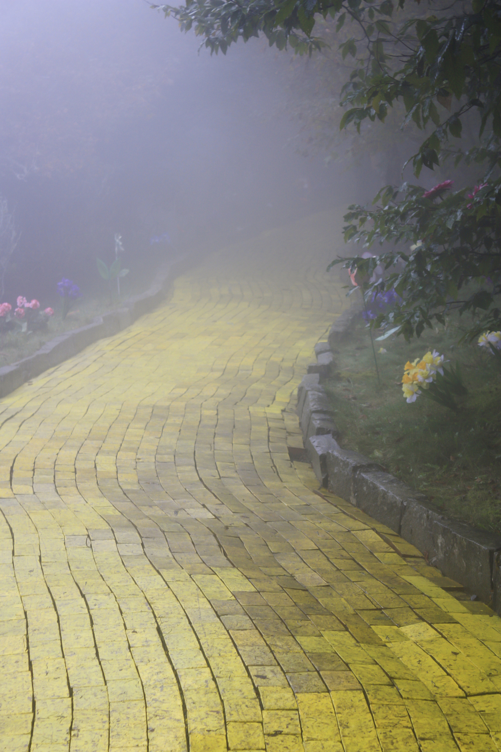 Along the yellow brick road, we learned the Wizard will ask us to choose one of four wishes.