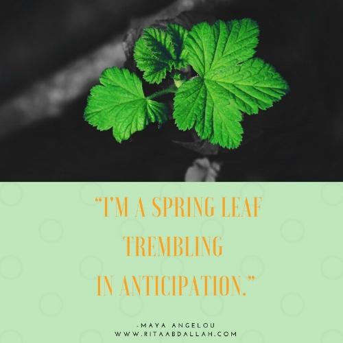 """I'm a spring leaf trembling in anticipation."" - Maya Angelou"