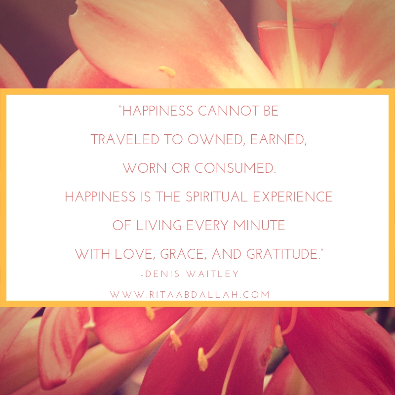 """""""Happiness cannot be traveled to, owned, earned, worn or consumed. Happiness is the spiritual experience of living every minute with love, grace, and gratitude."""" -Denis Waitley, Writer"""