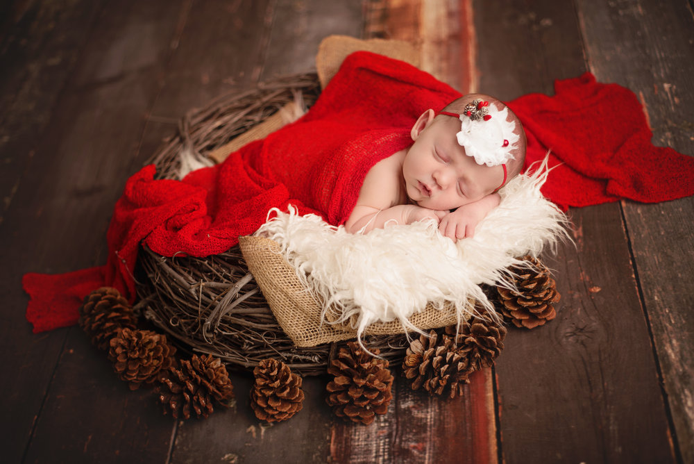 Chloe - Newborn Portraits by Traci Lynn Photography (11).jpg