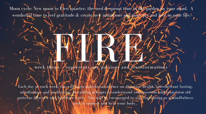 fire_week_(1).png