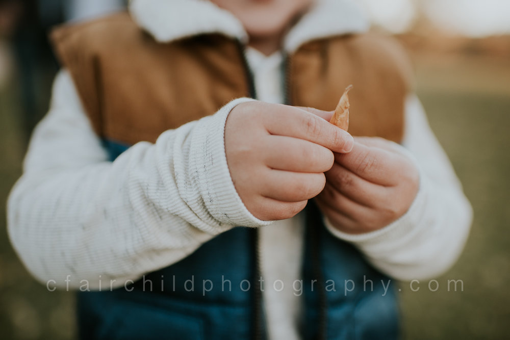 fall-family-portraits-2.jpg