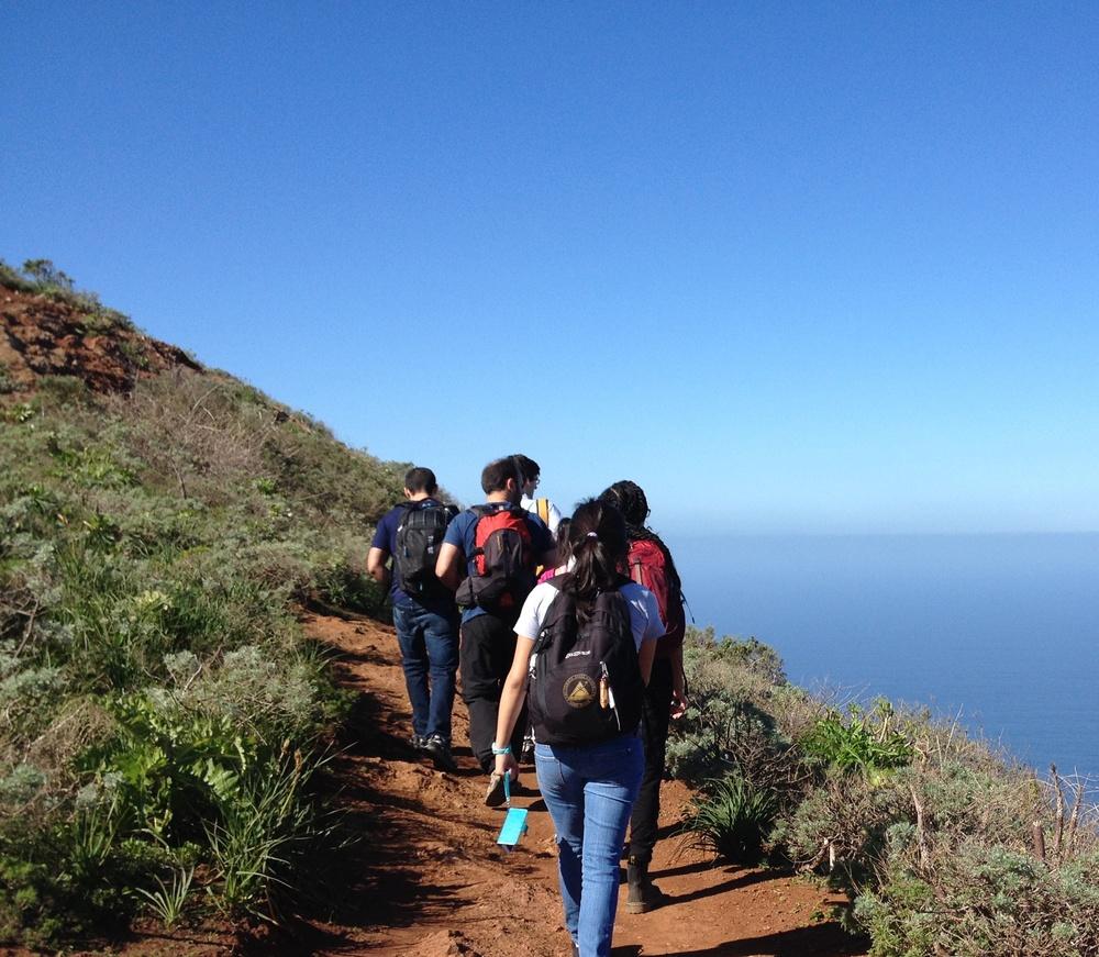 2014 Fellows, Canary Islands, Spain.