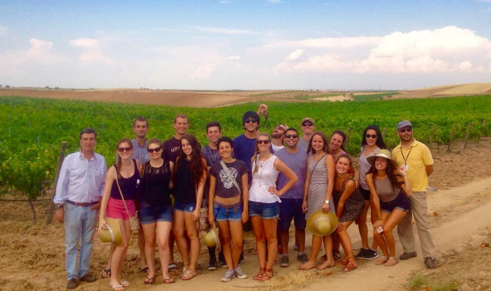 Taking a break from hospital shadowing: vineyard excursion, Atlantis Fellows 2015,Toledo, Spain