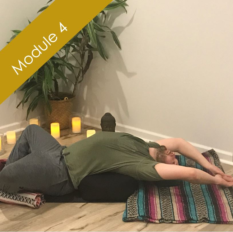 Restorative and Yoga Nidra    January 11-13 [2019]    With: Cheryl Oliver ERYT-500