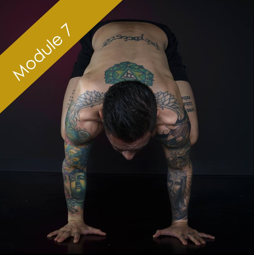 Arm Balances and Inversions    March 8-10 [2019]    With: Anton MacKey