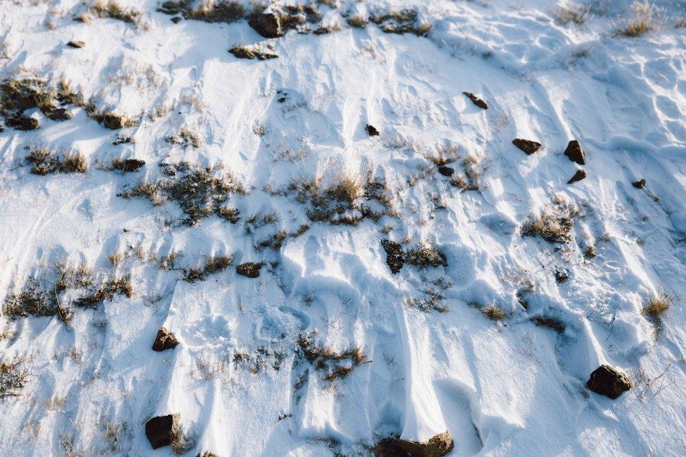 ajwells_grizzly_peak-12.jpg