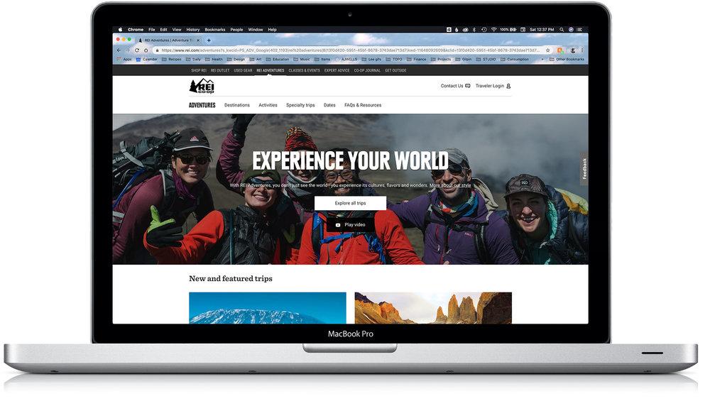 REI Homepage - January 2019