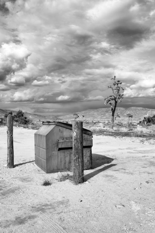 Pioneer Town Dumpster no crop.jpg