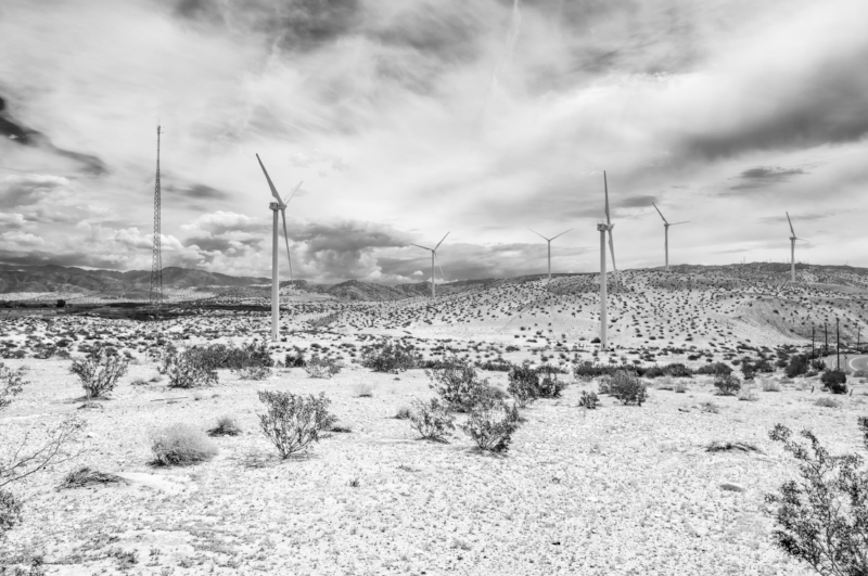 Desert Windraeder.jpg