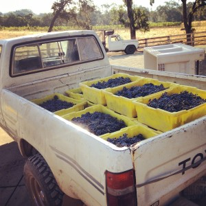 2014 HARVEST WRAP-UP